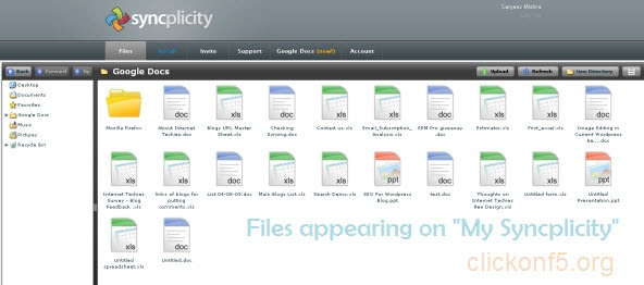 My syncplicity window showing Google Docs elements