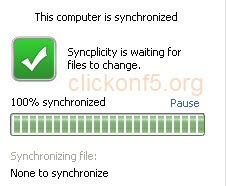 syncplicity System Tray Window