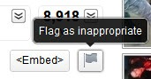Set flag for inappropriate videos