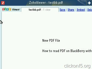 PDF file opened on BlackBerry
