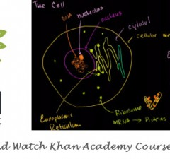 Offline browsing of Khan Academy Videos and Exercises